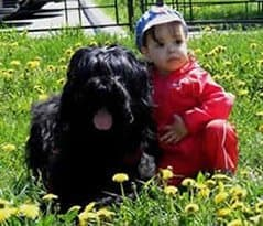 Our Black Terriers with kids