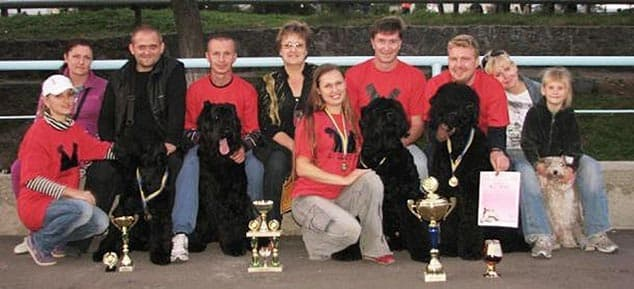 Black Terrier Kennel SOKROVISCHE RUSI Exhibitions